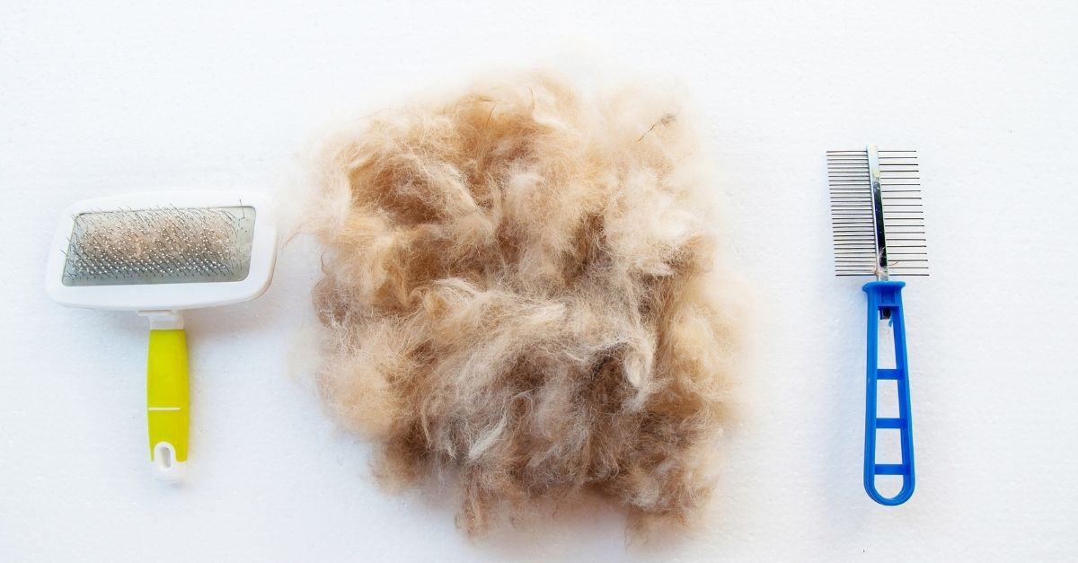 lint roller for pet hair